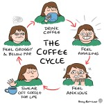 The coffee cycle